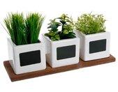"""Lot de 3 Plantes Artificielles """"Herbes Aromatiques"""" 34cm Blanc"""