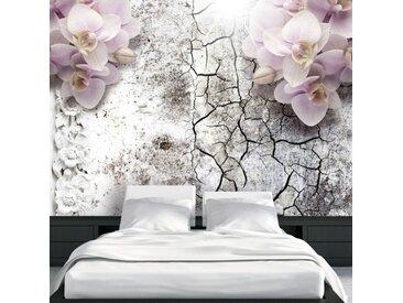 """Papier Peint """"Bright Red Orchids"""" - Paris Prix"""