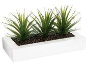 """Centre de Table Aloe Vera """"Plant"""" 31cm Blanc - Paris Prix"""