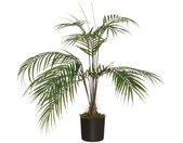 """Plante Artificielle """"Palmier"""" 72cm Vert - Paris Prix"""