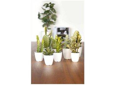 Present Time Plante artificielle Present Time Petit modèle PT2884AS (unité)