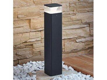 Lampe pour socle LED Lidia en aluminium 50 cm– LAMPENWELT.com
