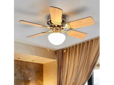 Ventilateur de plafond à 6 pales Flavio à lumière– LAMPENWELT.com
