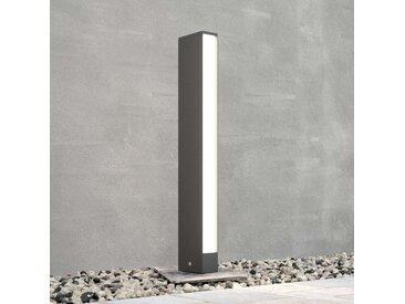 Borne lumineuse LED Lirka, gris foncé, à 1 lampe– LAMPENWELT.com