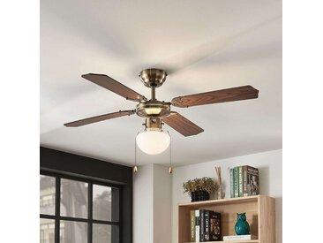 Ventilateur de plafond Joulin, éclairé, chêne– LAMPENWELT.com