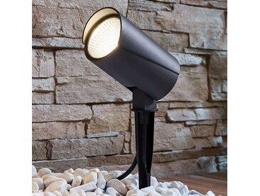 Projecteur d'extérieur LED Anton avec piquet– LAMPENWELT.com