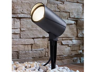 Projecteur d'extérieur LED Anton avec piquet