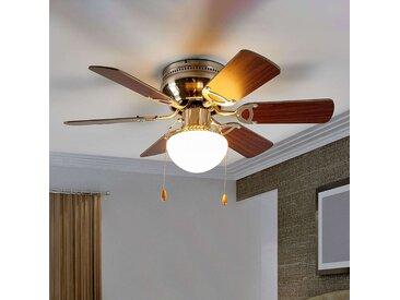 Ventilateur de plafond éclairé Flavio, 6 pales– LAMPENWELT.com