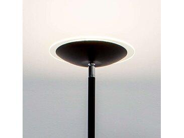 Lampadaire à éclairage indirect LED Malea noir– LAMPENWELT.com