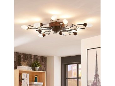 Plafonnier LED Renato, 10 lampes, dimmable– LAMPENWELT.com