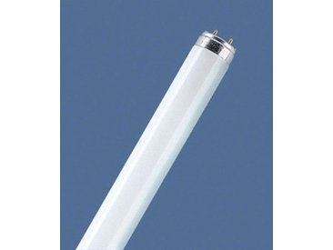 G13 T8 58W/60 Tube fluorescent rouge