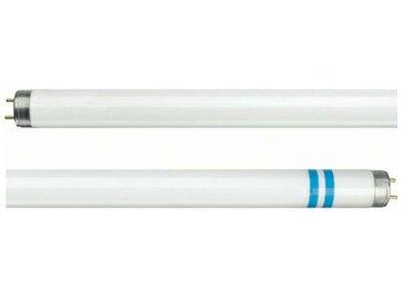 Tube fluo G13 T8 avec protection contre les éclats