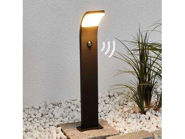 Timm - borne lumineuse LED avec capteur, 60cm– LAMPENWELT.com