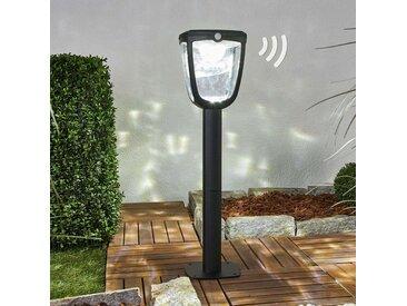 Borne lumineuse solaire Henk, avec détecteur– LAMPENWELT.com
