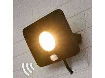 Projecteur d'extérieur LED Duke, alu, capteur, 30W– LAMPENWELT.com