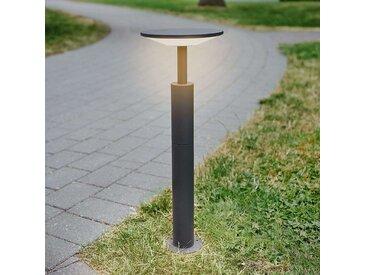 Borne lumineuse LED Fenia couleur anthracite– LAMPENWELT.com