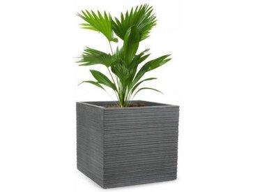 Blumfeldt Luxflor Bac à fleurs 55 x 50 x 55 cm fibre de verre - gris foncé