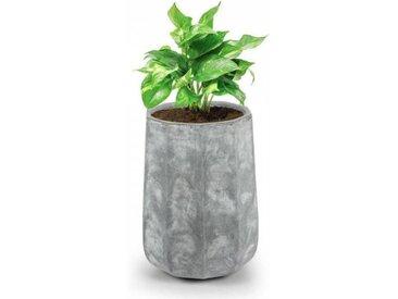 Blumfeldt Decaflor Bac à fleurs 55 x 70 x 55 cm fibre de verre - gris clair