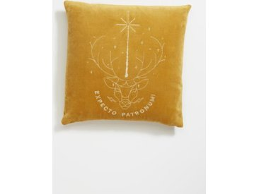 Coussin velours Harry Potter ocre
