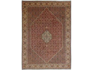Tapis Persan Bidjar 347x249 Bidjar Marron (Noué à la main, Perse/Iran, Laine)
