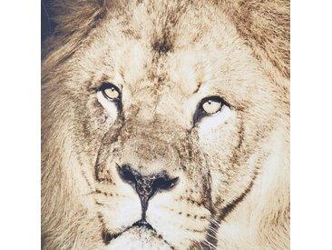 Toile imprimé lion 103x143