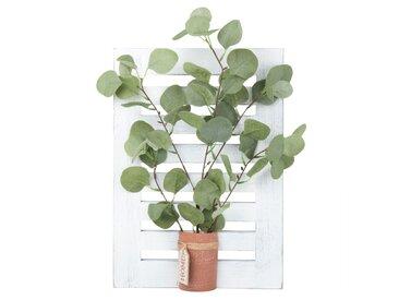 Tableau volet et eucalyptus artificiel