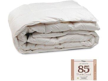 Couette Lestra Softyne 85% Duvet 200x200 cm