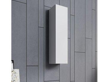 Armoire murale modèle  Aitana O1 (30x120cm) couleur blanc