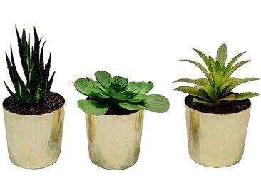 Plante artificielle en pot DANDY mod�le au choix