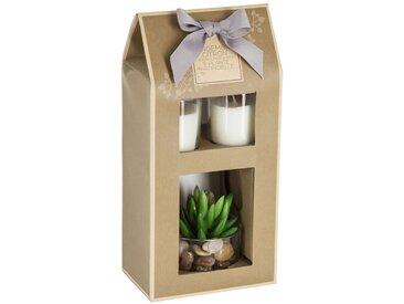 Coffret 2 bougies + plante artificielle ODELIN