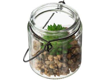 Plante artificielle dans verre PADRITE