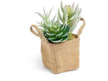 Kave Home - Mélanger des plantes Suculenta artificielles dans un pot de raphia naturel