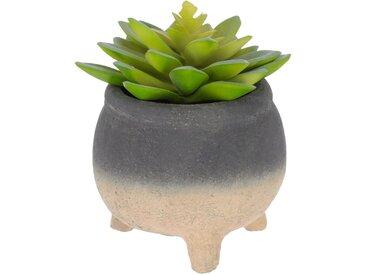 Kave Home - Plante artificielle Sedum lucidum en pot en ciment