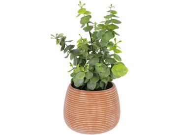 Kave Home - Eucalyptus artificielle en pot marron