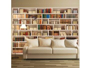 Papier peint - Bibliothèque domestique