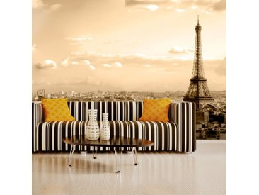 Papier peint - Paris - panorama