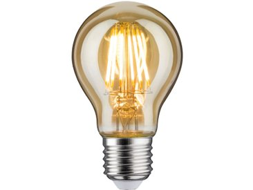 Ampoule Nordelta