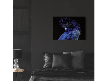 Tableau en verre Perroquet bleu