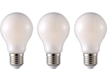 Ampoule Twer (lot de 3)