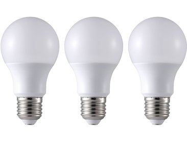 Ampoule Faxe (lot de 3)