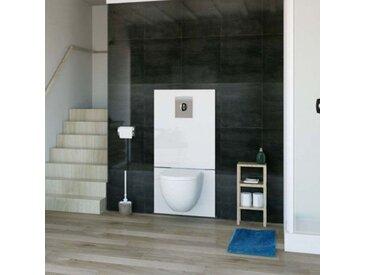 Sanibroyeur SFA Saniwall Pro UP WC, fixation dans systèmes de rails, Habillage verre