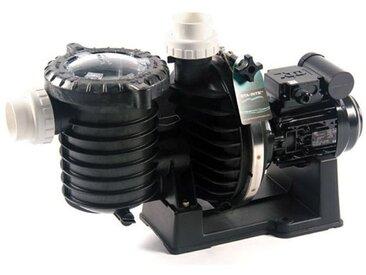 pompe à filtration 1.5 cv 22m3/h mono eau de mer