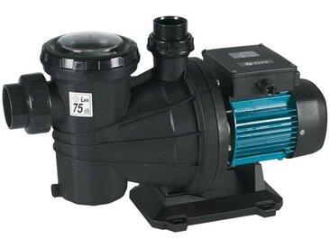 pompe à filtration 13m3/h triphasé