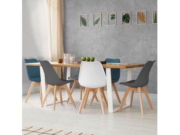 Idmarket - Lot de 6 chaises SARA mix color blanc, gris clair, bleu canard x2, gris foncé x2