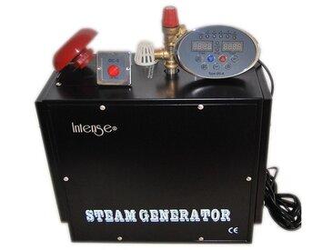 Générateur de vapeur professionnel Intense 9kw pour Hammam