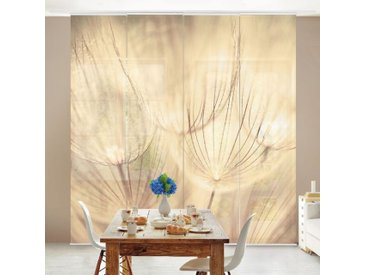 Ensemble de rideaux coulissants - Dandelions Close-Up In Homely Sepia Tones - 4 Rideaux à panneaux Dimension: 250 x 240cm (4 rideaux á 250 x 60cm); Système de montage: sans suspension