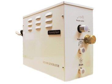 Générateur vapeur STEAMPLUS 6Kw pour Hammam
