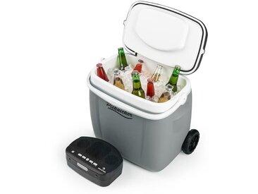 auna Picknicker Glacière 36 litres & sono portable Bluetooth USB batterie - gris