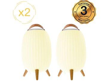 Lanterne nomade musicale EZIlight® Ambiant L - Pack de 2 lampes
