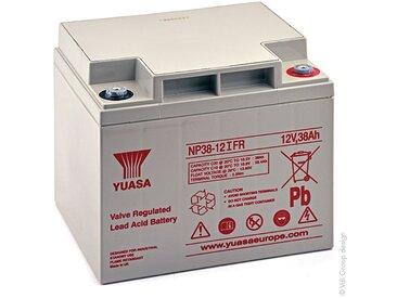 Batterie plomb AGM YUASA NP38-12IFR 12V 38Ah M5-F